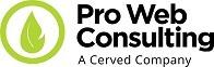 Pro Web Consulting logo